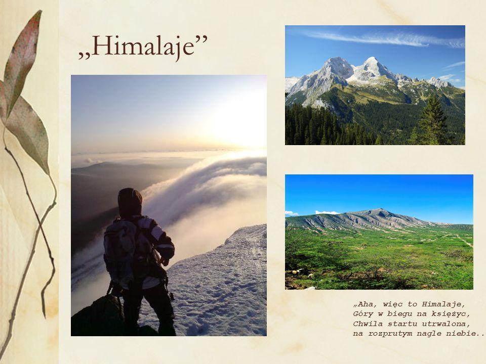 Himalaje Aha, więc to Himalaje, Góry w biegu na księżyc, Chwila startu utrwalona, na rozprutym nagle niebie..
