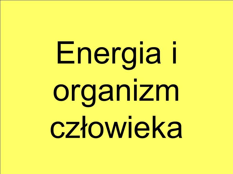 Energia i organizm człowieka