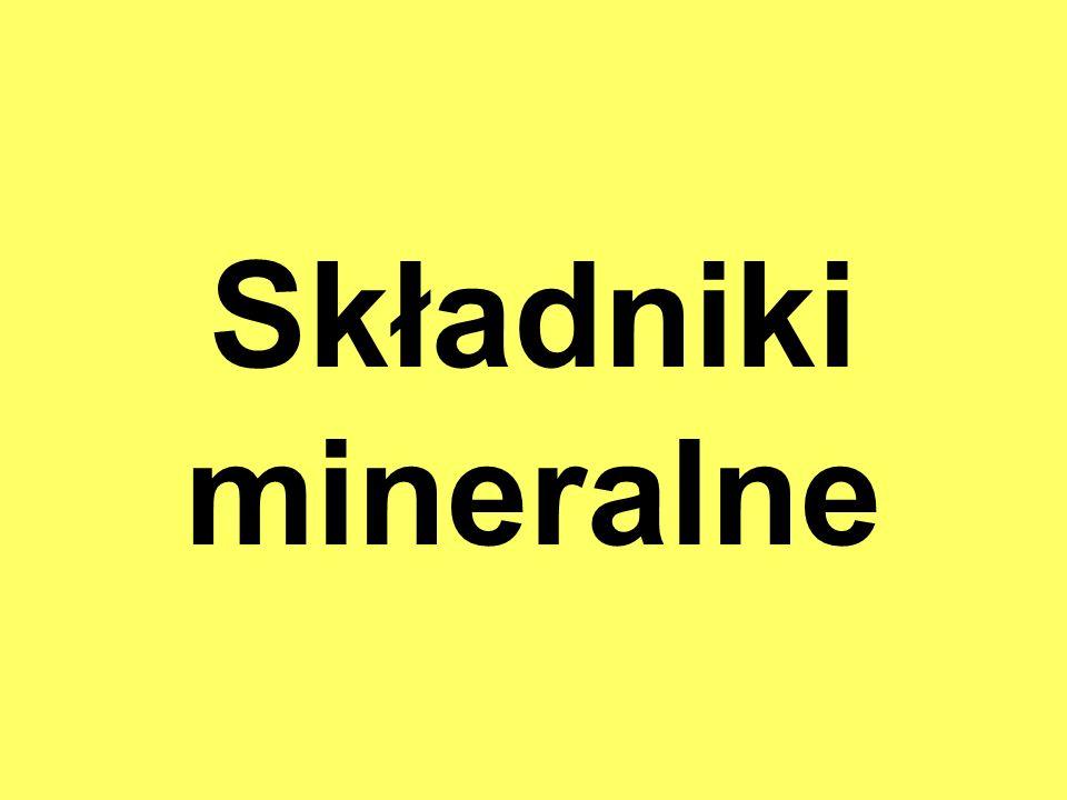 Składniki mineralne