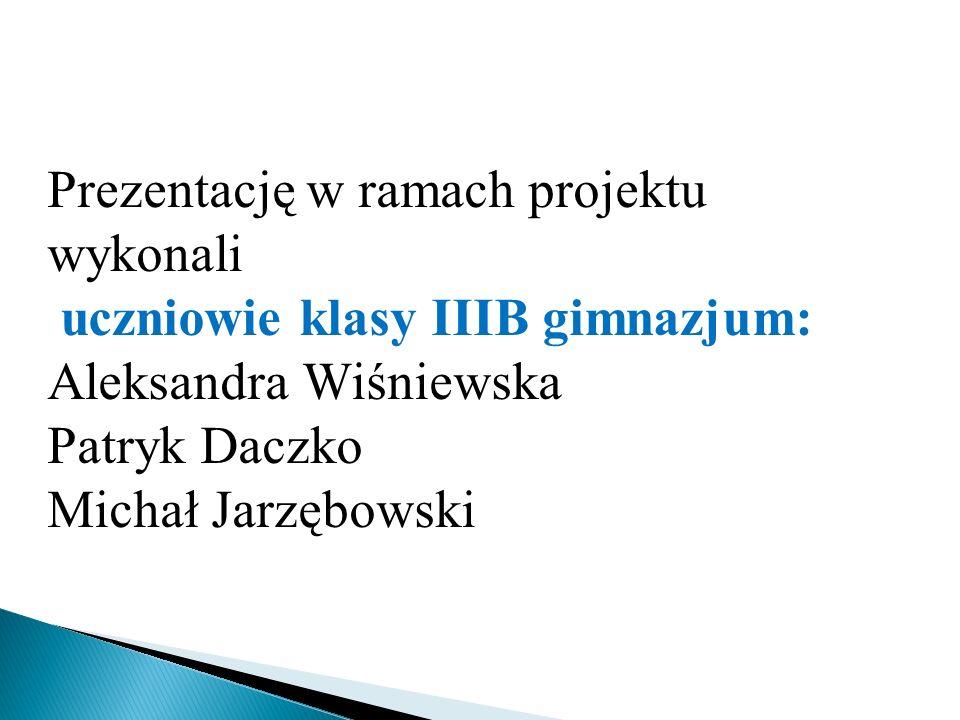 Prezentację w ramach projektu wykonali uczniowie klasy IIIB gimnazjum: Aleksandra Wiśniewska Patryk Daczko Michał Jarzębowski