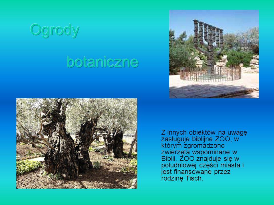 Z innych obiektów na uwagę zasługuje biblijne ZOO, w którym zgromadzono zwierzęta wspominane w Biblii. ZOO znajduje się w południowej części miasta i
