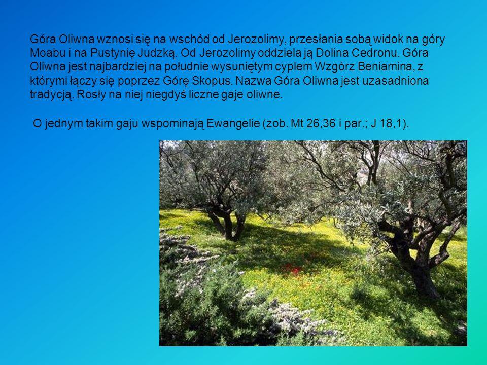 Góra Oliwna wznosi się na wschód od Jerozolimy, przesłania sobą widok na góry Moabu i na Pustynię Judzką. Od Jerozolimy oddziela ją Dolina Cedronu. Gó