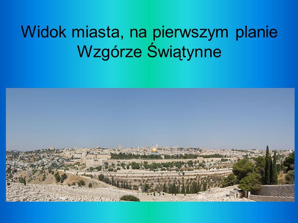 Widok miasta, na pierwszym planie Wzgórze Świątynne