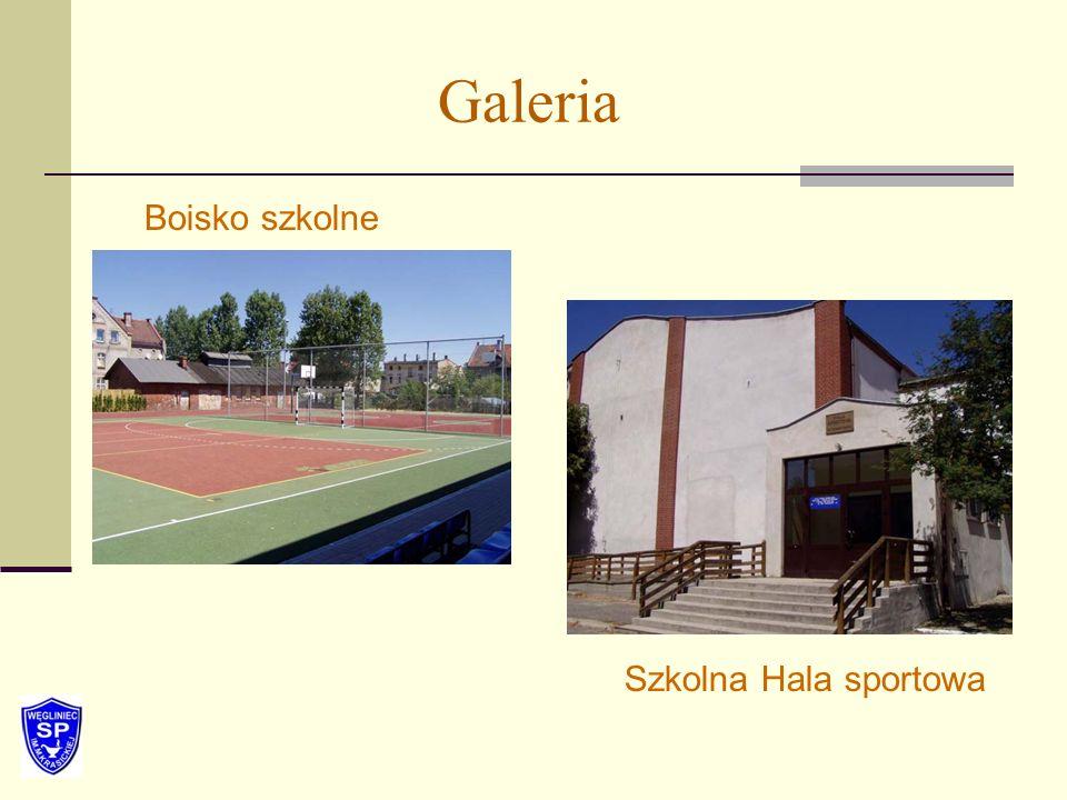 Galeria Boisko szkolne Szkolna Hala sportowa