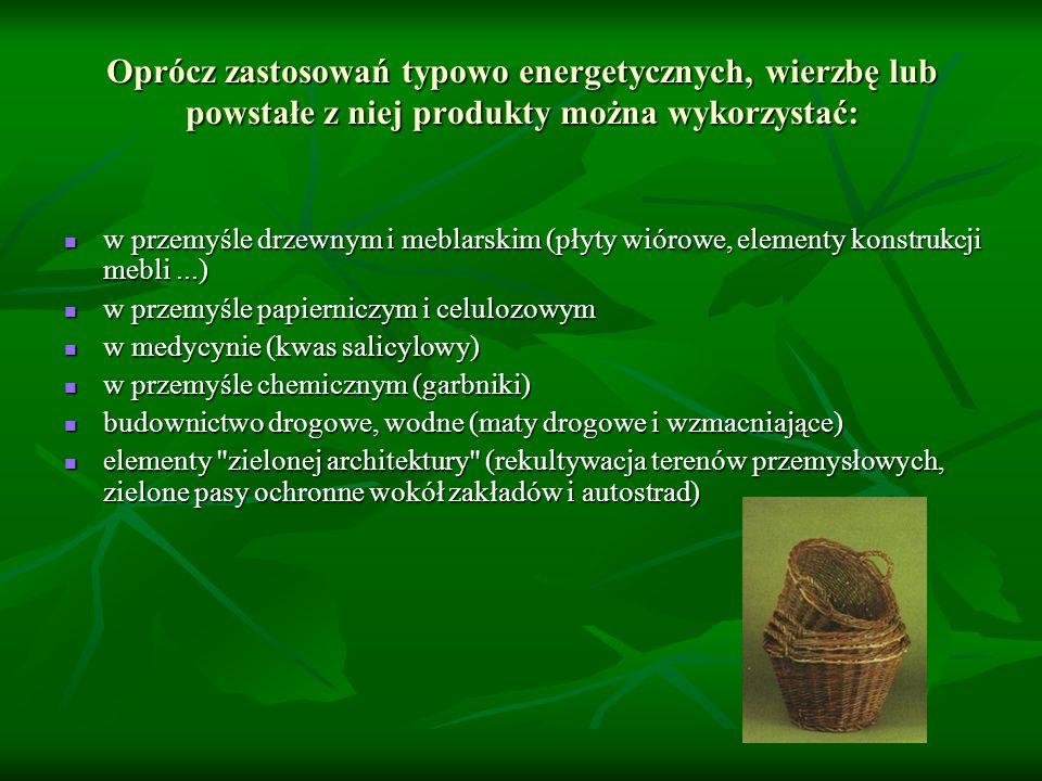 Oprócz zastosowań typowo energetycznych, wierzbę lub powstałe z niej produkty można wykorzystać: w przemyśle drzewnym i meblarskim (płyty wiórowe, ele