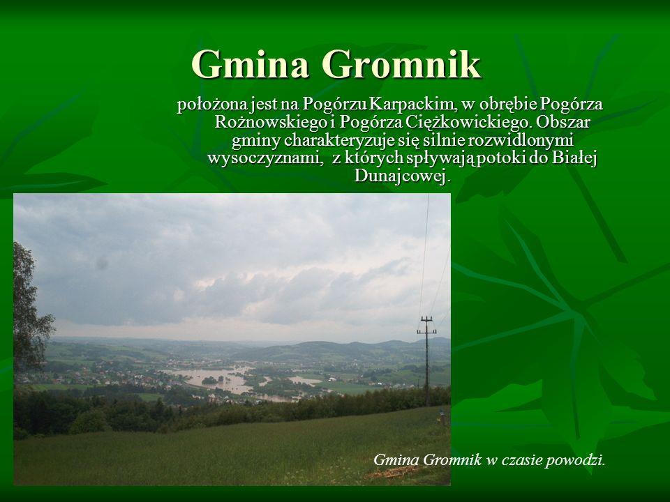 Gmina Gromnik położona jest na Pogórzu Karpackim, w obrębie Pogórza Rożnowskiego i Pogórza Ciężkowickiego. Obszar gminy charakteryzuje się silnie rozw