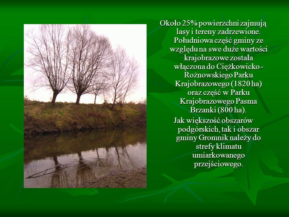 Około 25% powierzchni zajmują lasy i tereny zadrzewione. Południowa część gminy ze względu na swe duże wartości krajobrazowe została włączona do Ciężk