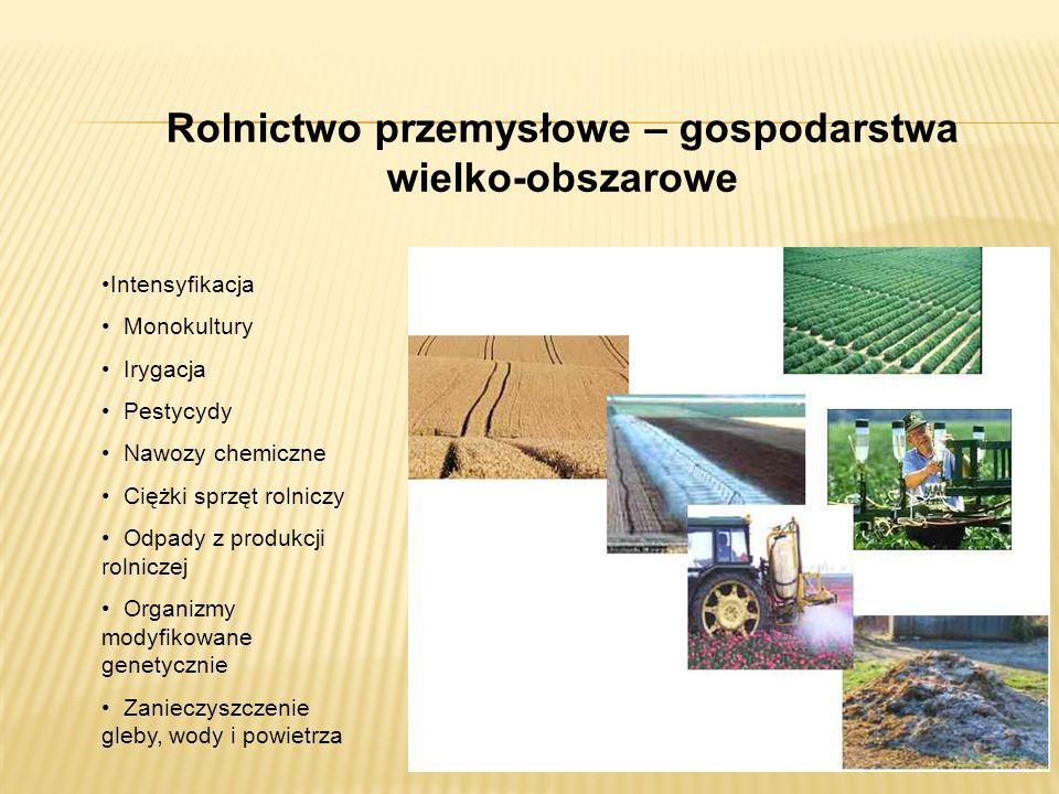Intensyfikacja Monokultury Irygacja Pestycydy Nawozy chemiczne Ciężki sprzęt rolniczy Odpady z produkcji rolniczej Organizmy modyfikowane genetycznie