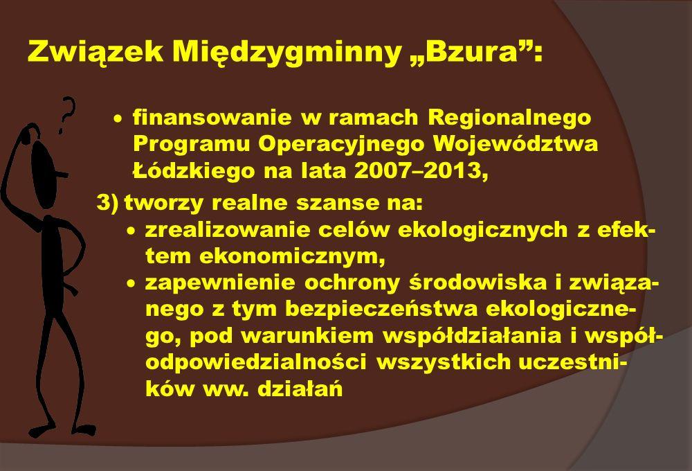 Związek Międzygminny Bzura: finansowanie w ramach Regionalnego Programu Operacyjnego Województwa Łódzkiego na lata 2007–2013, 3)tworzy realne szanse n