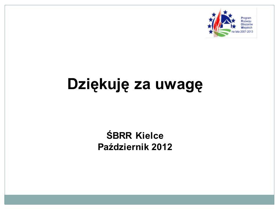 Dziękuję za uwagę ŚBRR Kielce Październik 2012