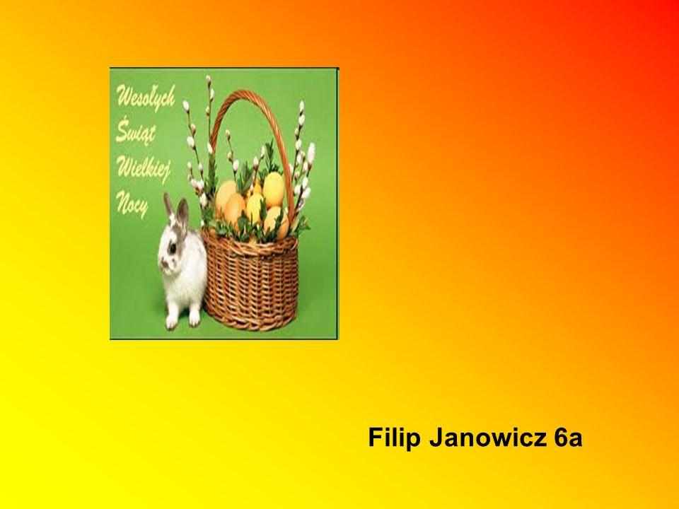 Filip Janowicz 6a