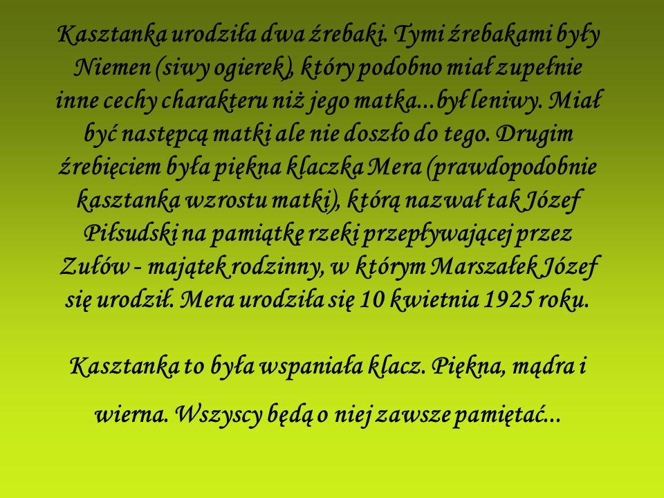 Kasztanka urodziła dwa źrebaki. Tymi źrebakami były Niemen (siwy ogierek), który podobno miał zupełnie inne cechy charakteru niż jego matka...był leni