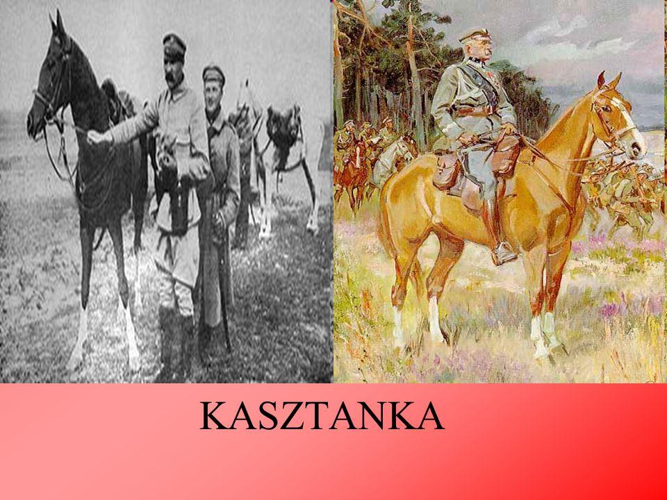 W roku 1893 w Warszawie powstała Polska Partia Socjalistyczna (PPS).Piłsudski, który rok wcześniej wrócił ze zsyłki, wstąpił w szeregi litewskiego oddziału i w 1894 został członkiem Centralnego Komitetu Robotniczego i redaktorem naczelnym wydawanego przez PPS pisma Robotnik.