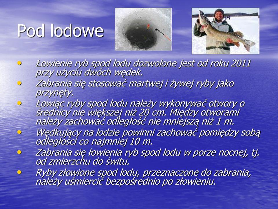 Pod lodowe Łowienie ryb spod lodu dozwolone jest od roku 2011 przy użyciu dwóch wędek. Łowienie ryb spod lodu dozwolone jest od roku 2011 przy użyciu
