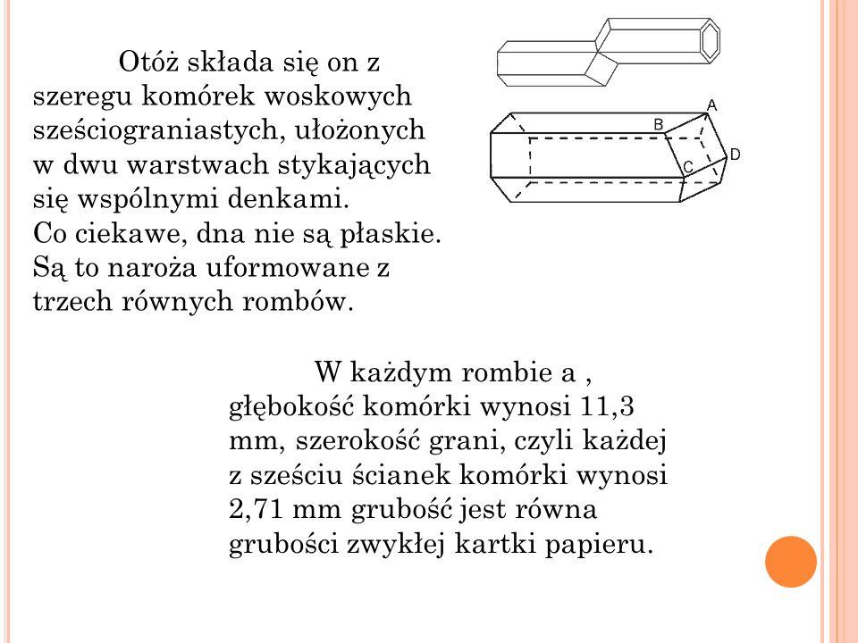Podziel tarczę zegara trzema cięciami prostymi tak, żeby na każdej z trzech powstałych części suma liczb była taka sama.