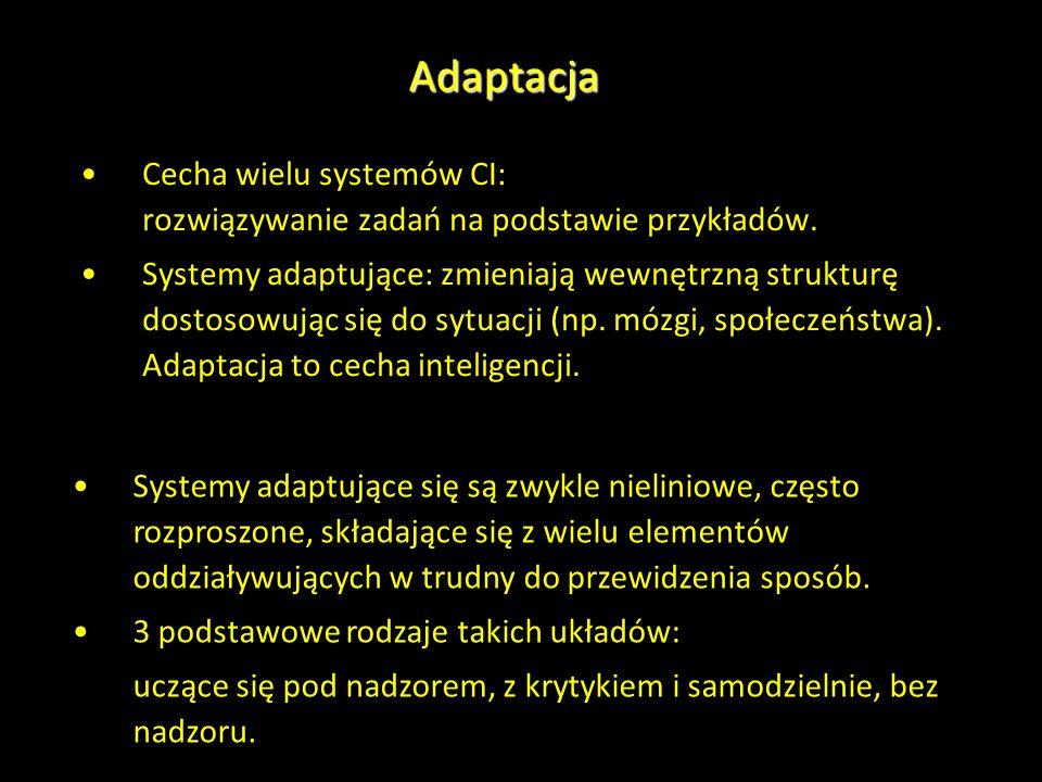 Adaptacja Cecha wielu systemów CI: rozwiązywanie zadań na podstawie przykładów. Systemy adaptujące: zmieniają wewnętrzną strukturę dostosowując się do