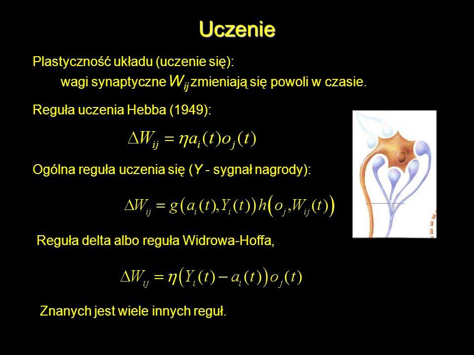 Uczenie Plastyczność układu (uczenie się): wagi synaptyczne W ij zmieniają się powoli w czasie. Reguła uczenia Hebba (1949): Ogólna reguła uczenia się