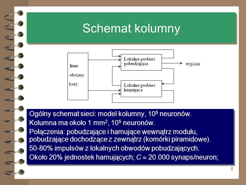 8 Schemat kolumny Ogólny schemat sieci: model kolumny, 10 5 neuronów. Kolumna ma około 1 mm 2, 10 5 neuronów. Połączenia: pobudzające i hamujące wewną