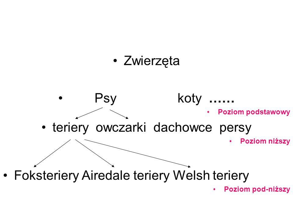 Zwierzęta Psy koty …… Poziom podstawowy teriery owczarki dachowce persy Poziom niższy Foksteriery Airedale teriery Welsh teriery Poziom pod-niższy
