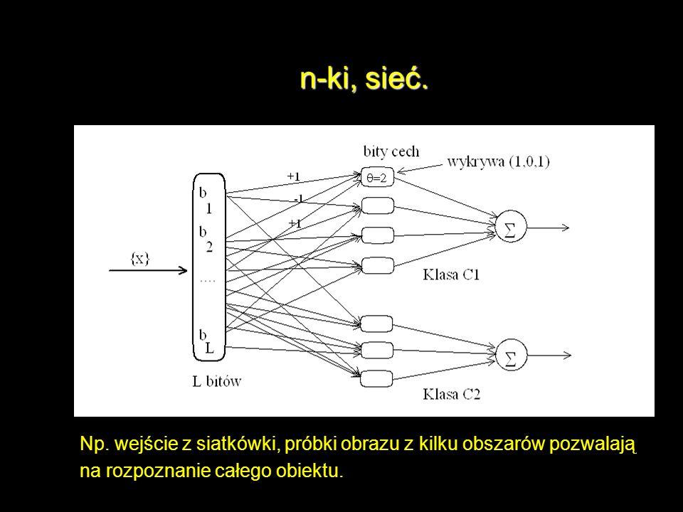 n-ki, sieć. Np. wejście z siatkówki, próbki obrazu z kilku obszarów pozwalają na rozpoznanie całego obiektu.