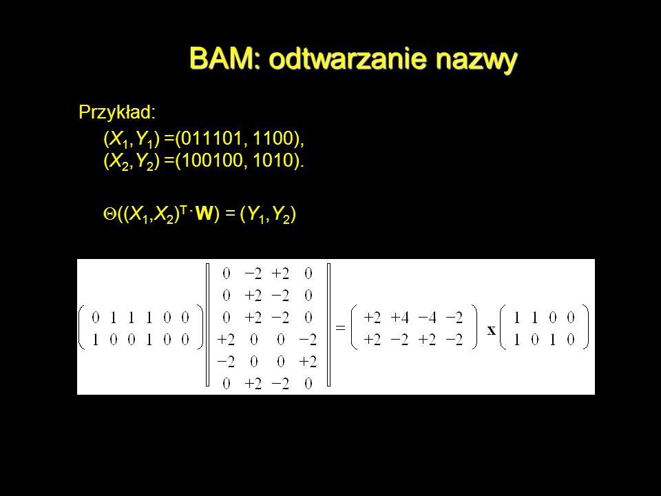 BAM: odtwarzanie nazwy Przykład: (X 1,Y 1 ) =(011101, 1100), (X 2,Y 2 ) =(100100, 1010). ((X 1,X 2 ) T W) = (Y 1,Y 2 )