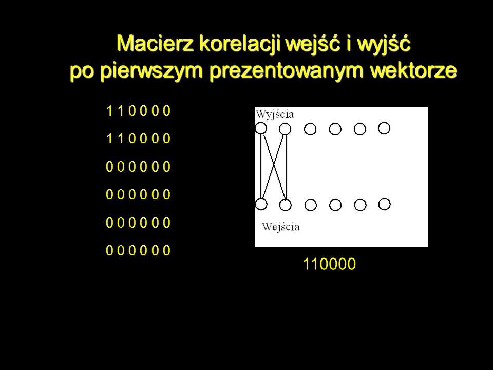 Macierz korelacji wejść i wyjść po pierwszym prezentowanym wektorze 1 1 0 0 0 0 0 0 0 110000
