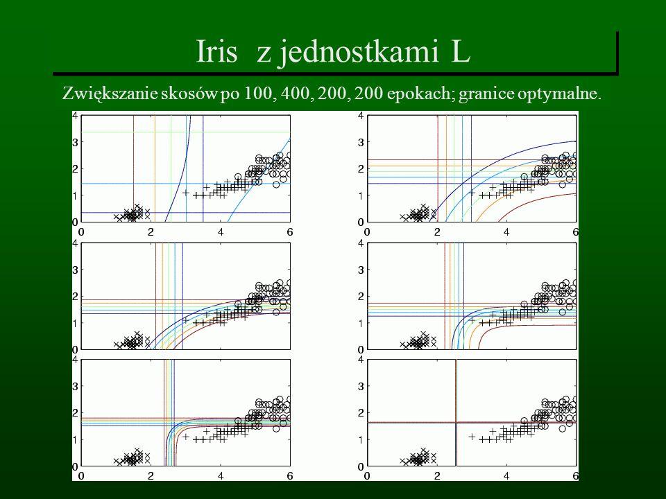 Iris z jednostkami L Zwiększanie skosów po 100, 400, 200, 200 epokach; granice optymalne.