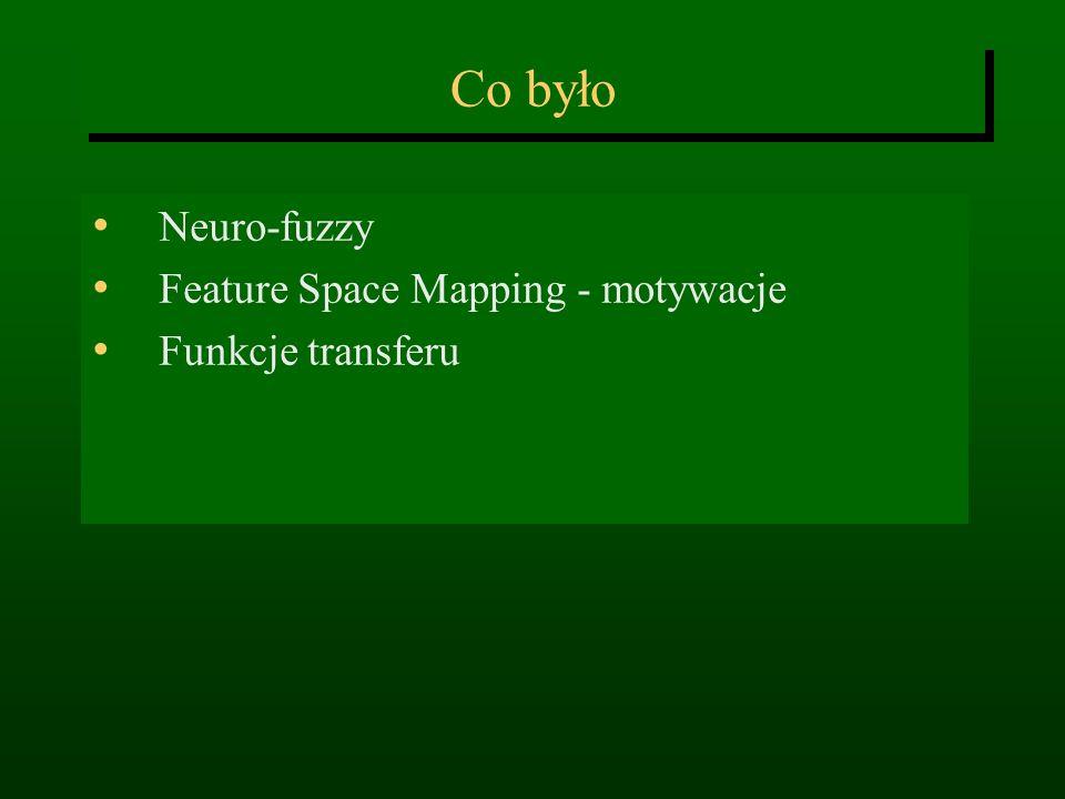 Co było Neuro-fuzzy Feature Space Mapping - motywacje Funkcje transferu