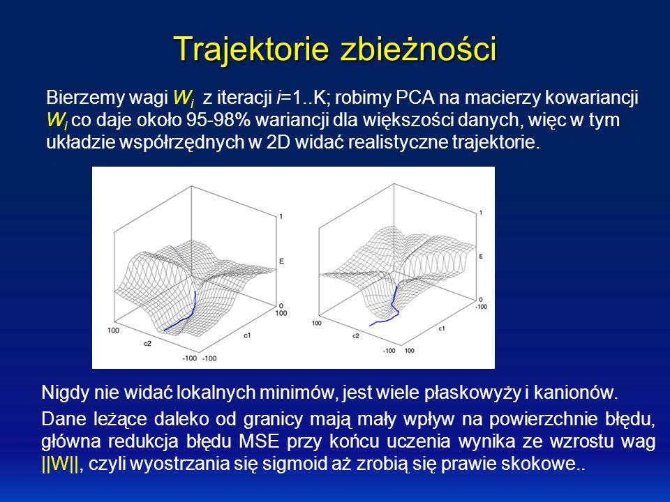Trajektorie zbieżności Bierzemy wagi W i z iteracji i=1..K; robimy PCA na macierzy kowariancji W i co daje około 95-98% wariancji dla większości danyc