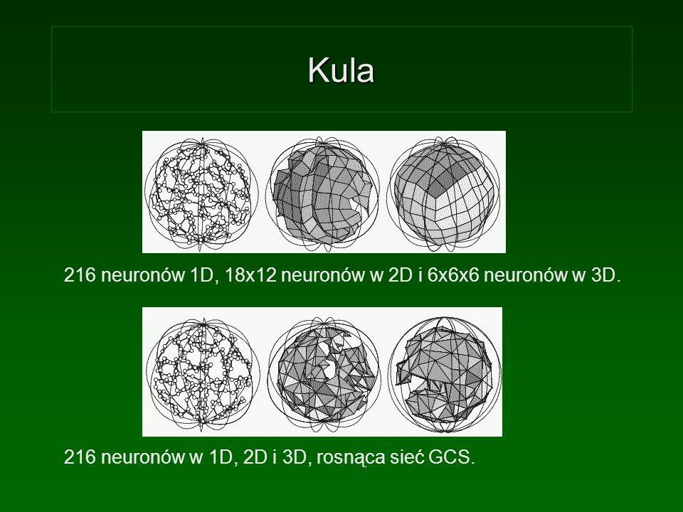 Kula 216 neuronów 1D, 18x12 neuronów w 2D i 6x6x6 neuronów w 3D. 216 neuronów w 1D, 2D i 3D, rosnąca sieć GCS.