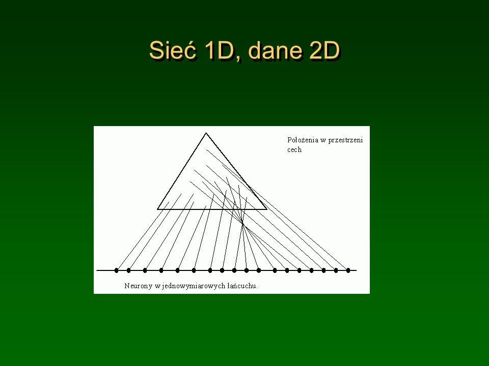 Sieć 1D, dane 2D