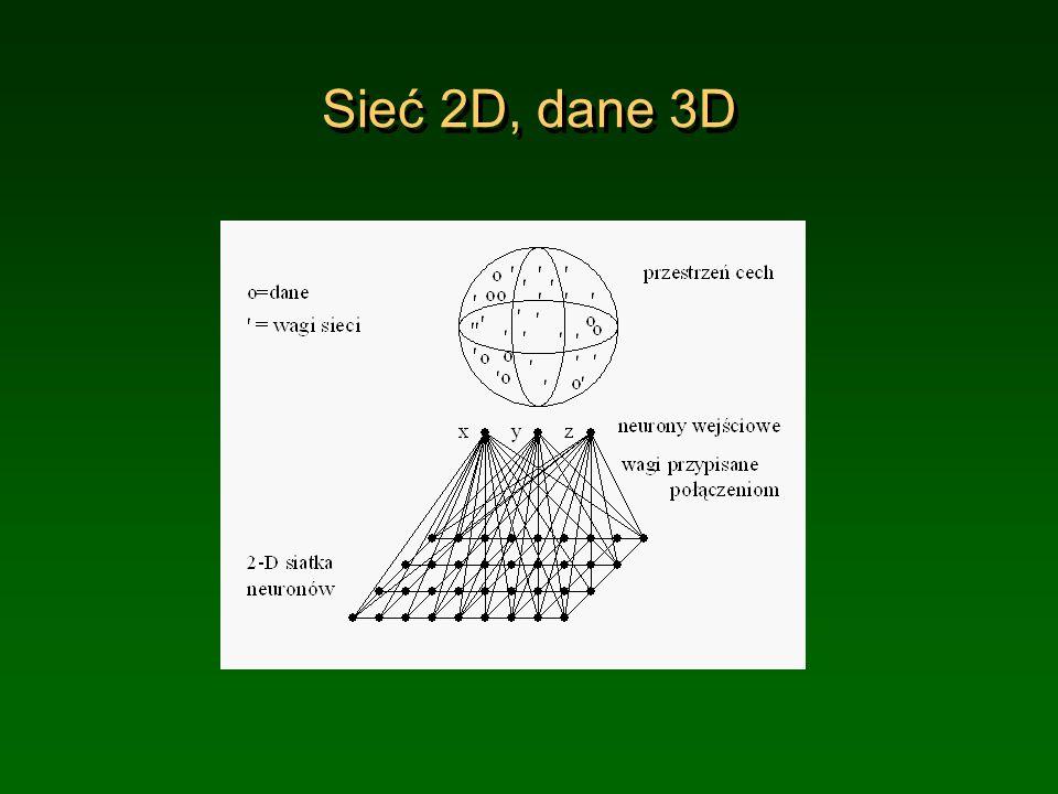 Sieć 2D, dane 3D