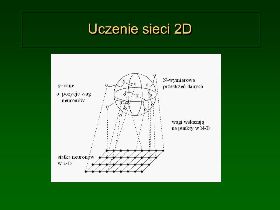 Uczenie sieci 2D