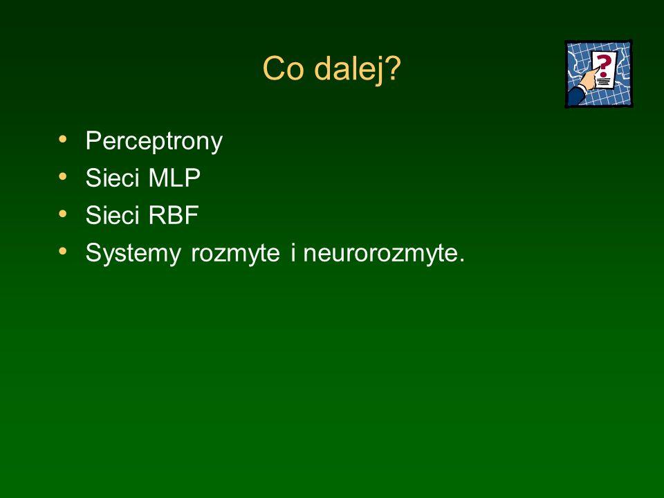 Co dalej? Perceptrony Sieci MLP Sieci RBF Systemy rozmyte i neurorozmyte.
