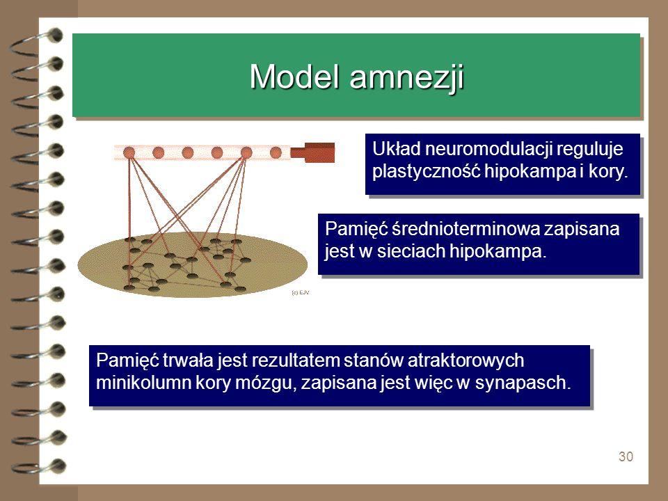 30 Model amnezji Pamięć trwała jest rezultatem stanów atraktorowych minikolumn kory mózgu, zapisana jest więc w synapasch. Układ neuromodulacji regulu