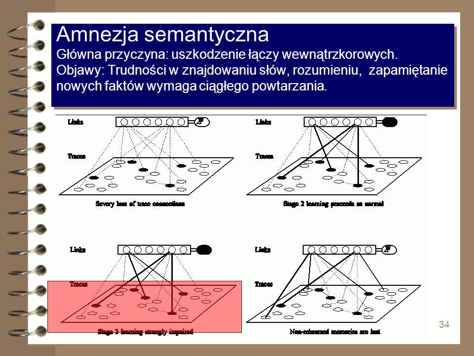 34 Amnezja semantyczna Główna przyczyna: uszkodzenie łączy wewnątrzkorowych. Objawy: Trudności w znajdowaniu słów, rozumieniu, zapamiętanie nowych fak