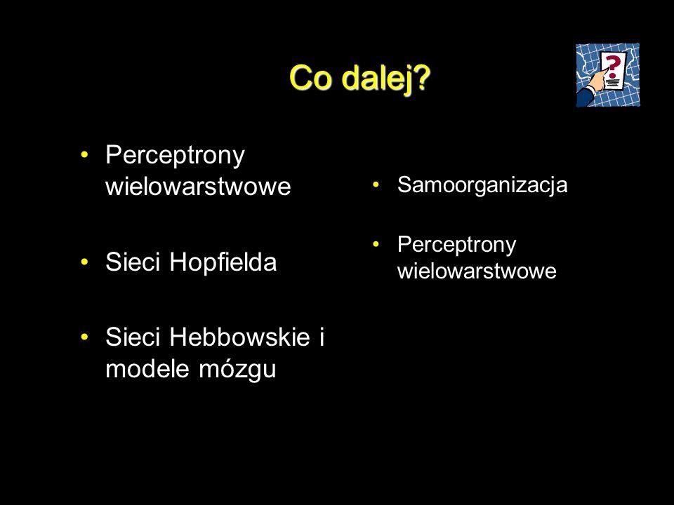 Co dalej? Perceptrony wielowarstwowe Sieci Hopfielda Sieci Hebbowskie i modele mózgu Samoorganizacja Perceptrony wielowarstwowe
