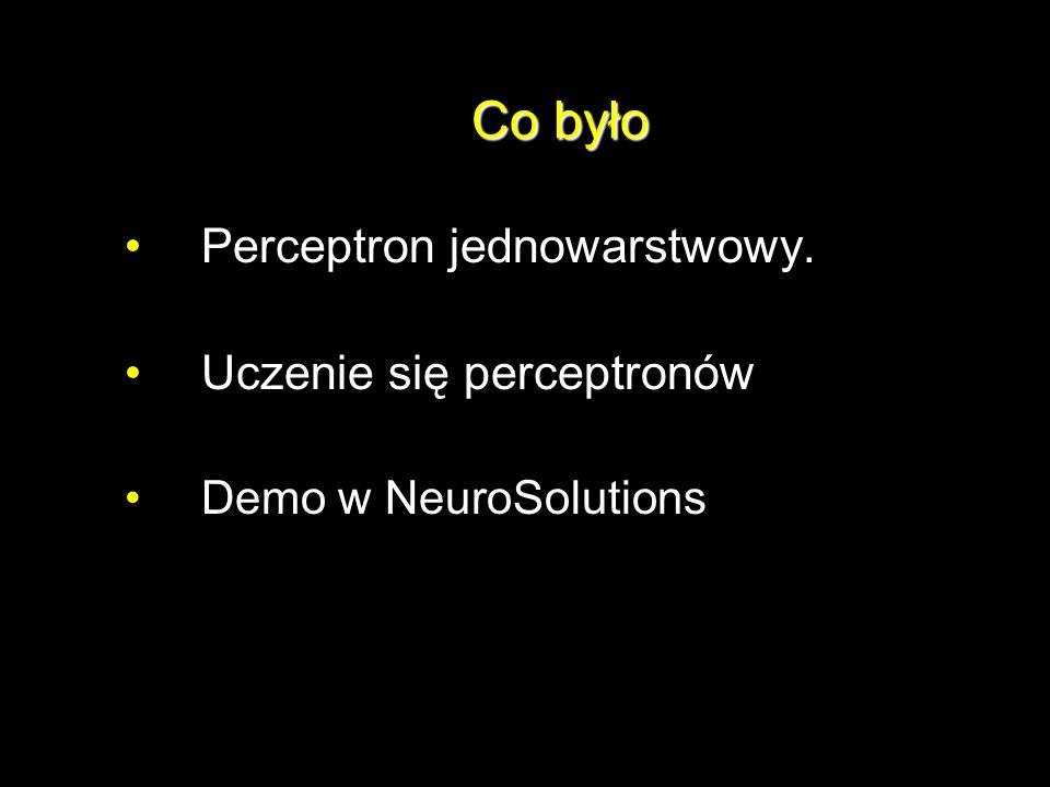 Co było Perceptron jednowarstwowy. Uczenie się perceptronów Demo w NeuroSolutions