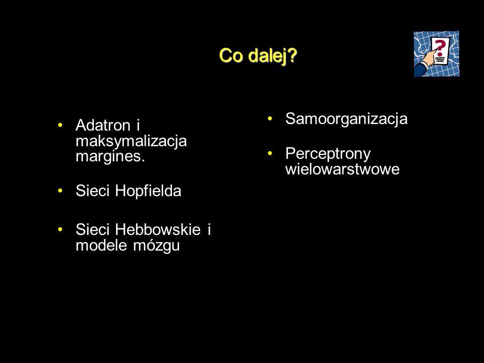 Co dalej? Adatron i maksymalizacja margines. Sieci Hopfielda Sieci Hebbowskie i modele mózgu Samoorganizacja Perceptrony wielowarstwowe