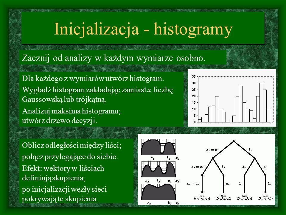 Inicjalizacja - histogramy Zacznij od analizy w każdym wymiarze osobno. Dla każdego z wymiarów utwórz histogram. Wygładź histogram zakładając zamiast