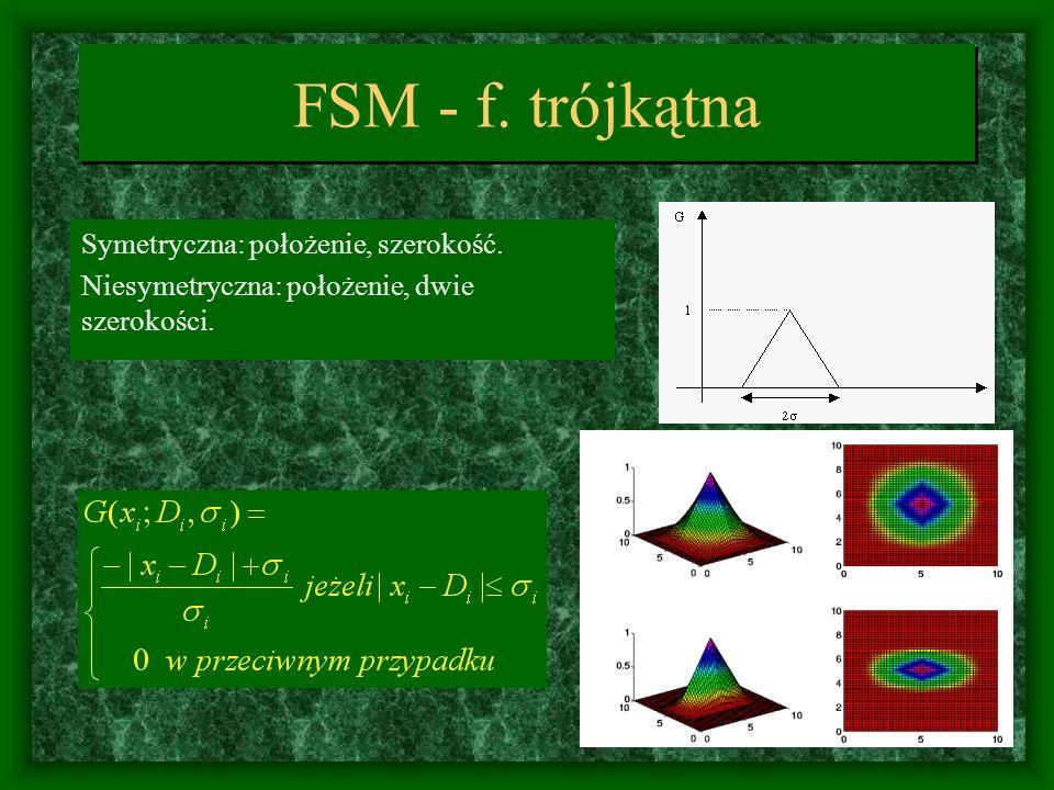 FSM - sieć Inicjalizacja: początkowy krajobraz i relacje topograficzne łącznego prawdop.