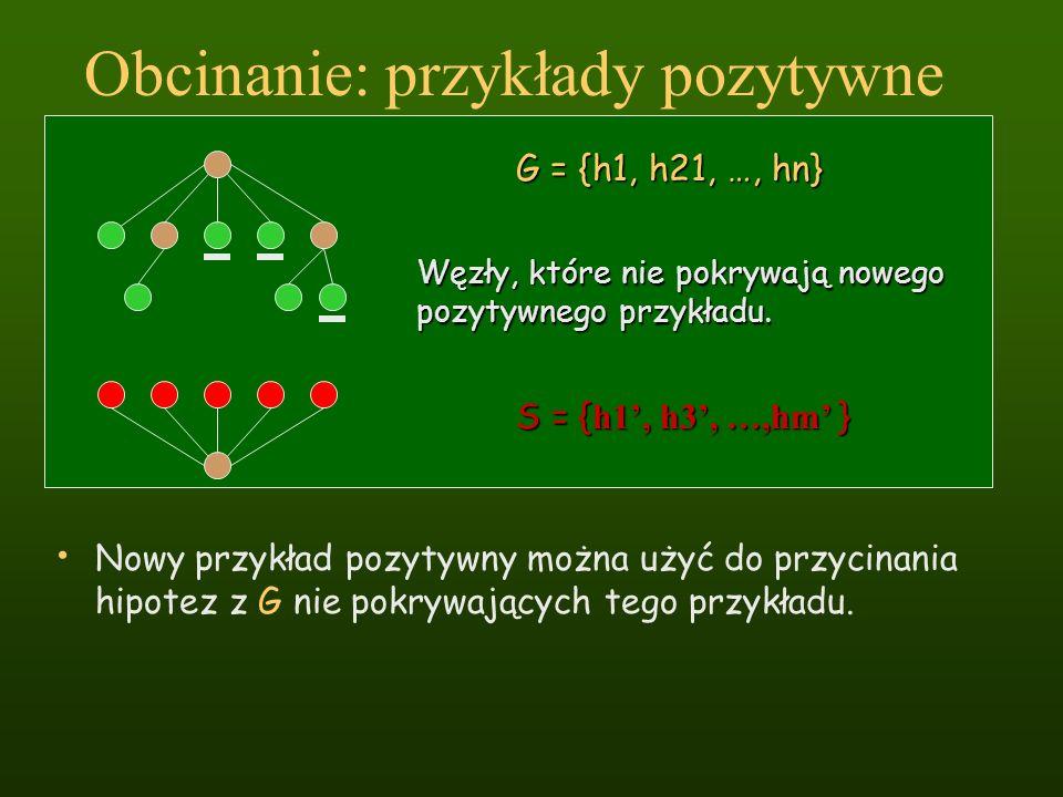Obcinanie: przykłady pozytywne Nowy przykład pozytywny można użyć do przycinania hipotez z G nie pokrywających tego przykładu. G = {h1, h21, …, hn} S