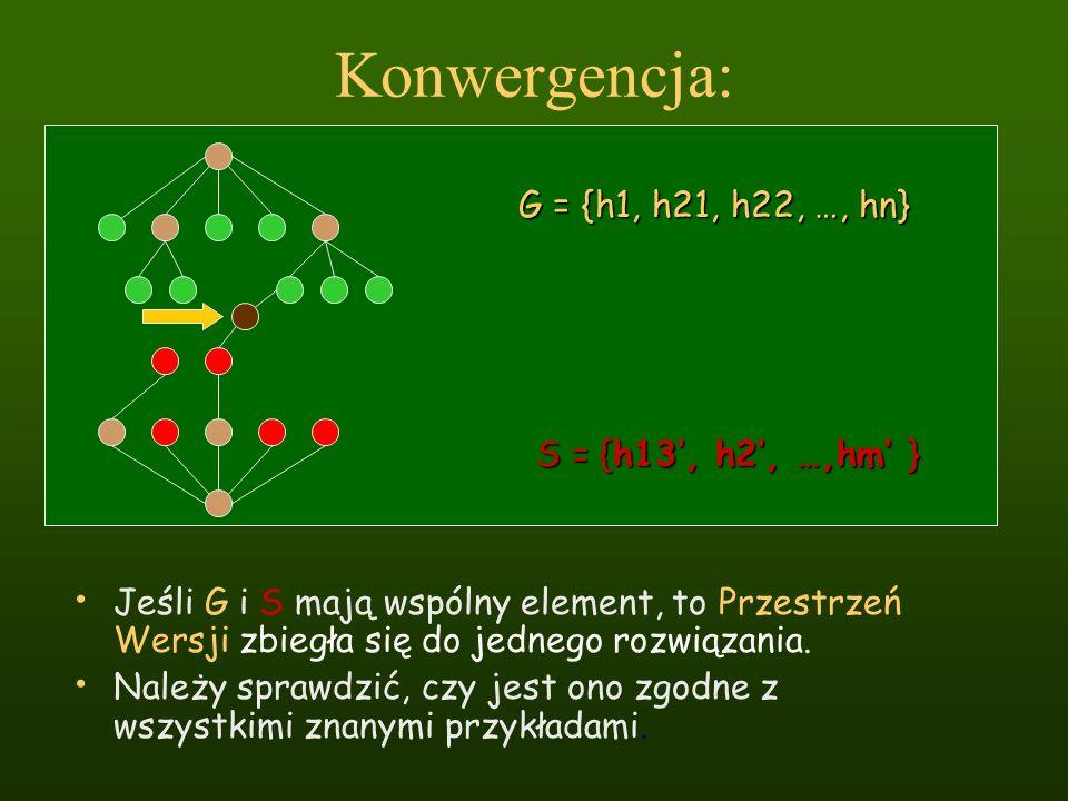 Konwergencja: Jeśli G i S mają wspólny element, to Przestrzeń Wersji zbiegła się do jednego rozwiązania. Należy sprawdzić, czy jest ono zgodne z wszys