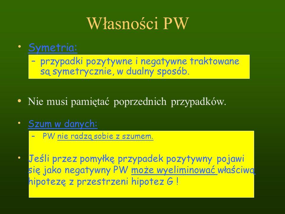 Własności PW Symetria: –przypadki pozytywne i negatywne traktowane są symetrycznie, w dualny sposób. Nie musi pamiętać poprzednich przypadków. Szum w