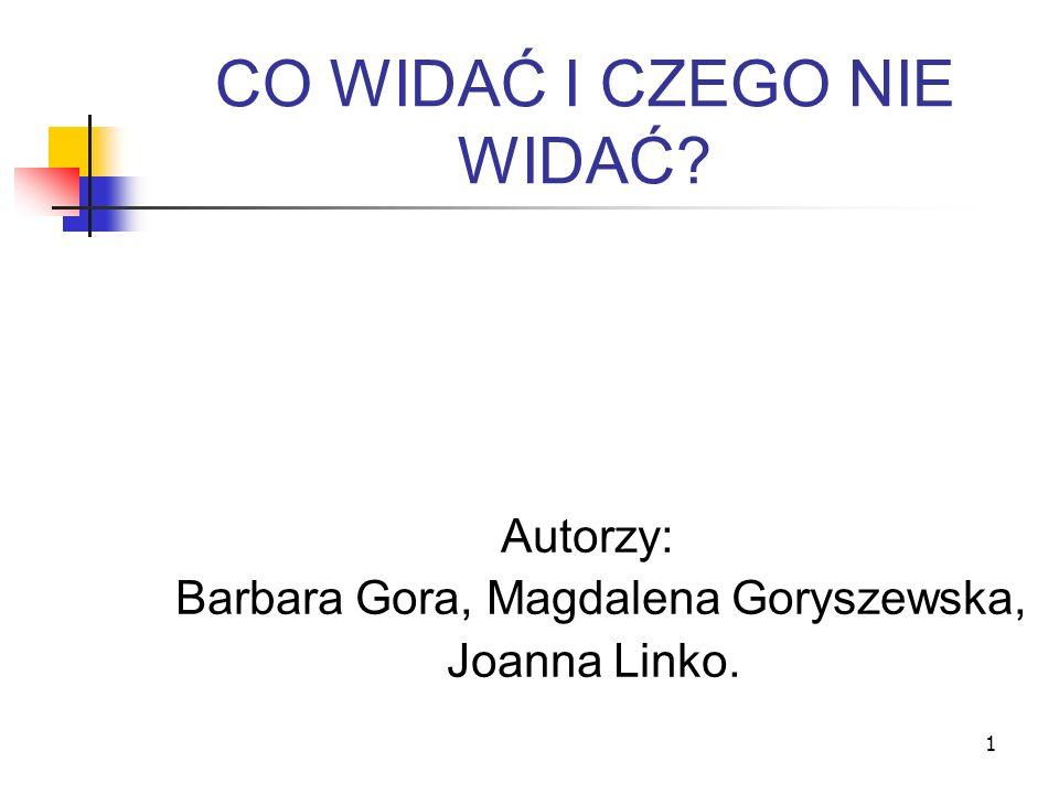 1 CO WIDAĆ I CZEGO NIE WIDAĆ? Autorzy: Barbara Gora, Magdalena Goryszewska, Joanna Linko.