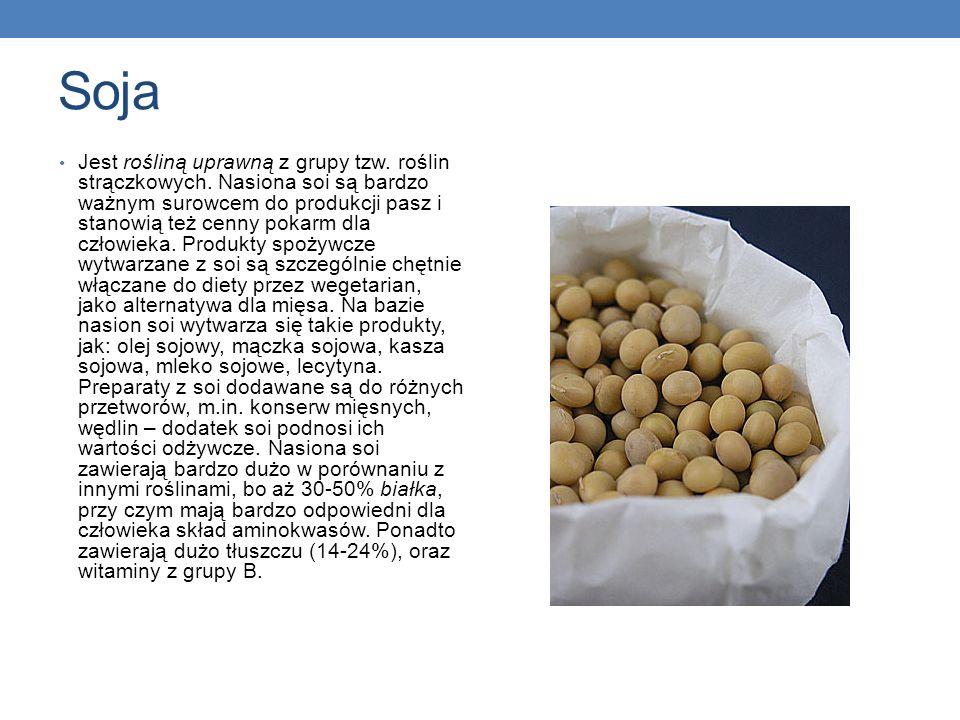 Soja Jest rośliną uprawną z grupy tzw. roślin strączkowych. Nasiona soi są bardzo ważnym surowcem do produkcji pasz i stanowią też cenny pokarm dla cz