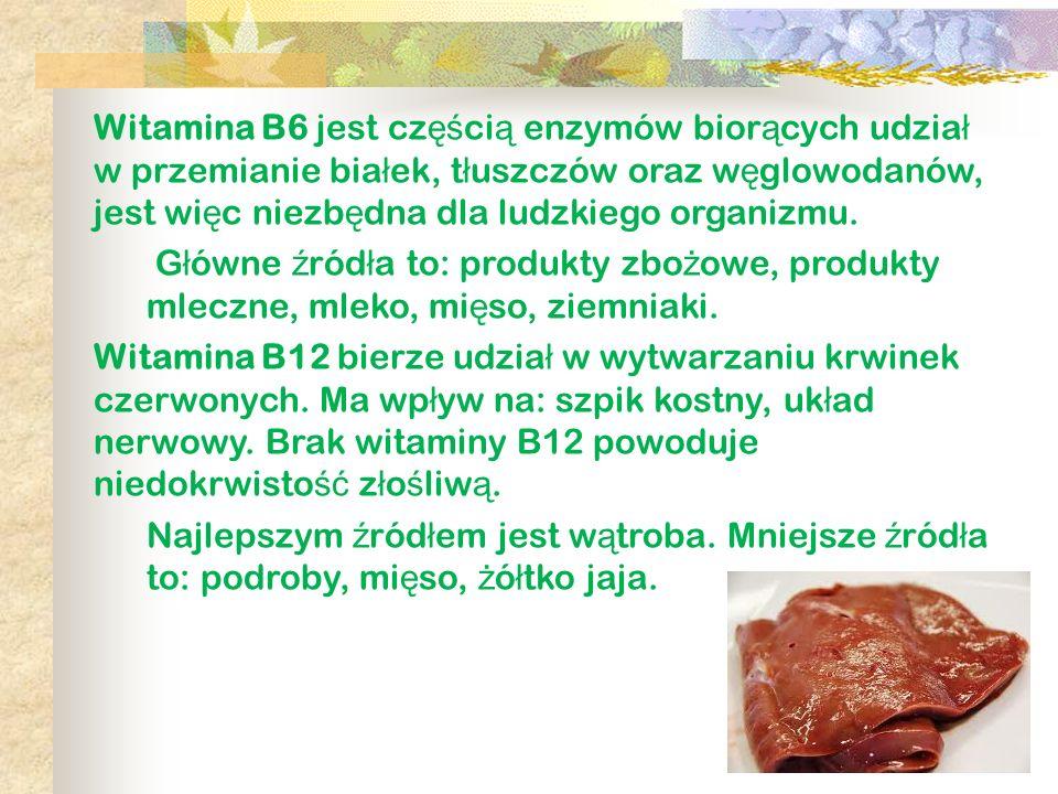 Witamina B6 jest cz ęś ci ą enzymów bior ą cych udzia ł w przemianie bia ł ek, t ł uszczów oraz w ę glowodanów, jest wi ę c niezb ę dna dla ludzkiego