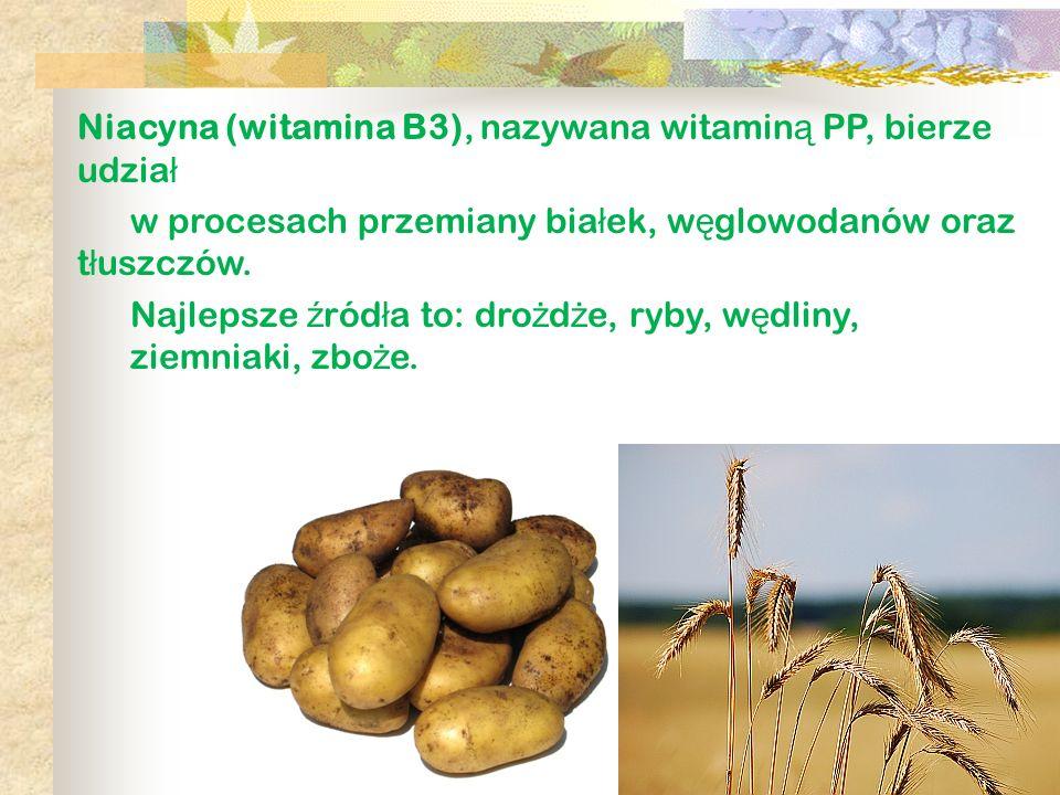 Niacyna (witamina B3), nazywana witamin ą PP, bierze udzia ł w procesach przemiany bia ł ek, w ę glowodanów oraz t ł uszczów. Najlepsze ź ród ł a to: