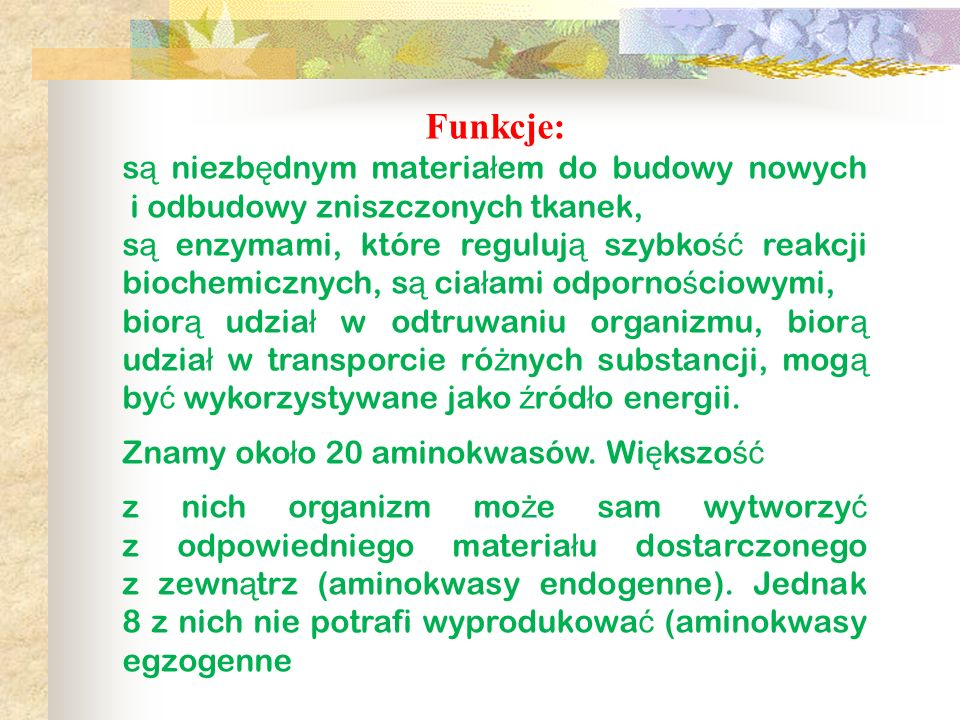 Podział białek Bia ł ka zwierz ę ce Bia ł ka te nazywane s ą pe ł nowarto ś ciowymi.