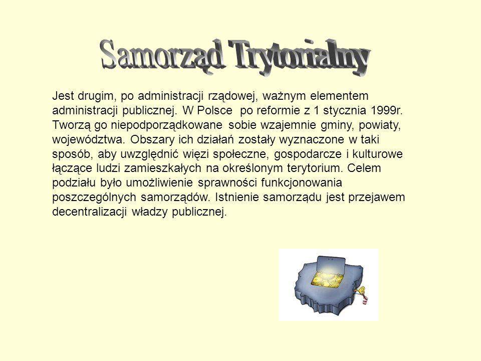 Jest drugim, po administracji rządowej, ważnym elementem administracji publicznej. W Polsce po reformie z 1 stycznia 1999r. Tworzą go niepodporządkowa